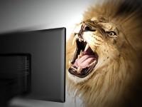 """""""Come comportarsi coi leoni da tastiera"""" di Ivan Nossa e Joe Vitale"""